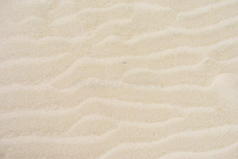 Die Beschaffenheit des sandigen Strandes lizenzfreie stockfotografie