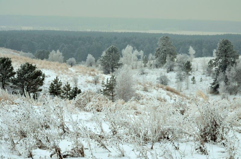 Die Beschaffenheit von Sibirien lizenzfreies stockbild