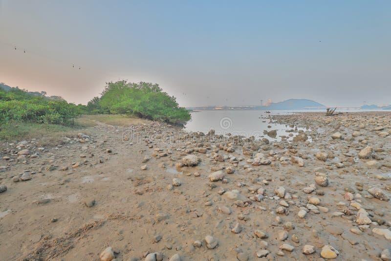 die Beschaffenheit von Sumpfgebiet in Tung Chungs-Fluss lizenzfreie stockbilder
