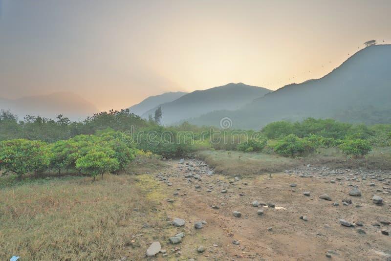 die Beschaffenheit von Sumpfgebiet in Tung Chungs-Fluss stockfotografie