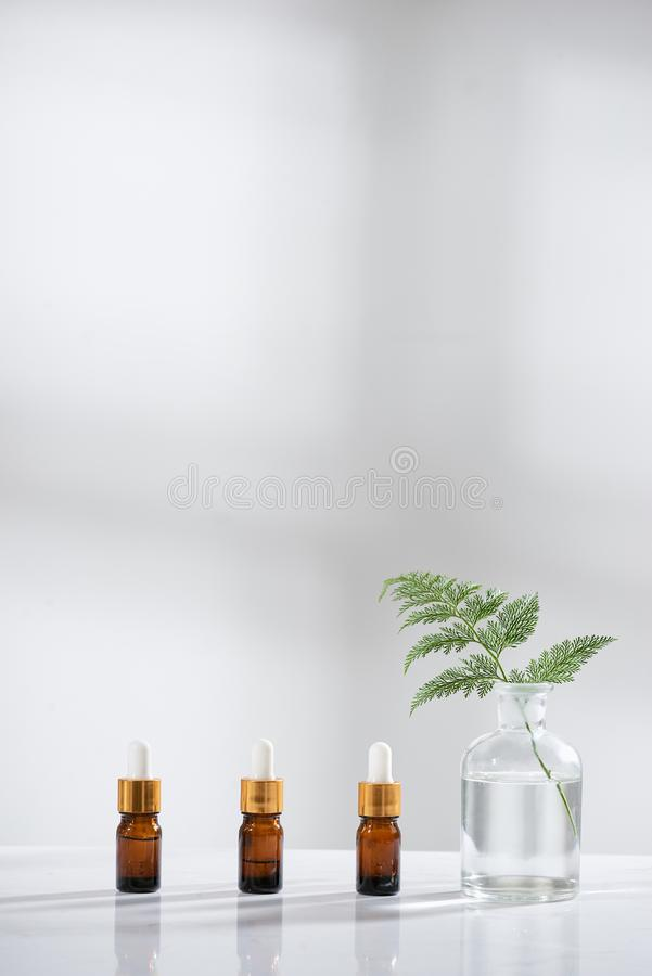 Die Biolaborglaswaren und leeren kosmetischen die Flaschenbehälter mit Kräuterblumenbestandteil, Paket für das Einbrennen frech lizenzfreies stockfoto