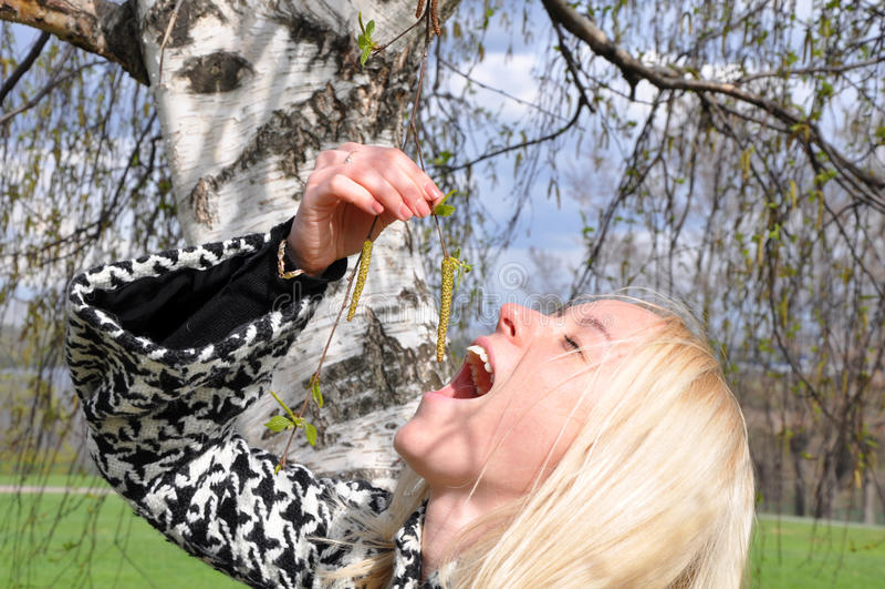 Die Blondine über eine Birke stockbilder