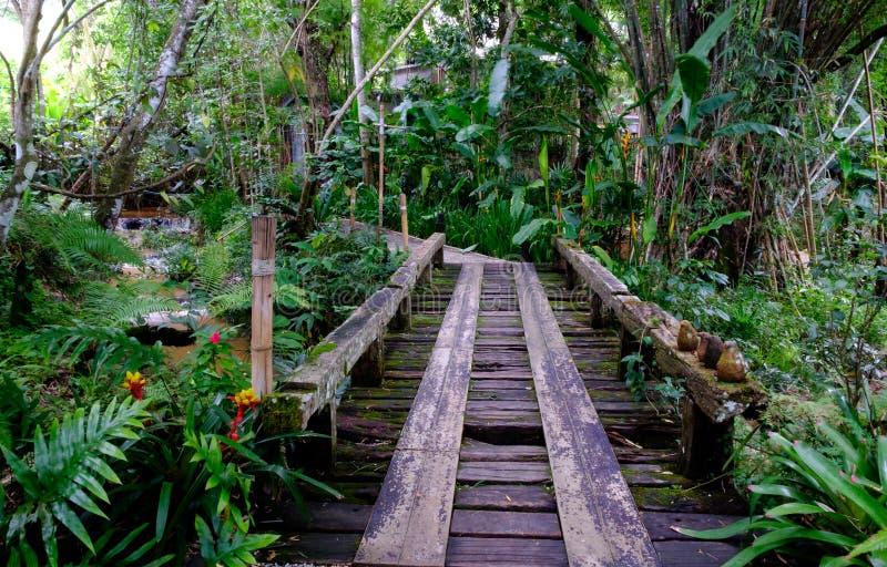 Die Brücke im Waldgarten lizenzfreie stockfotografie