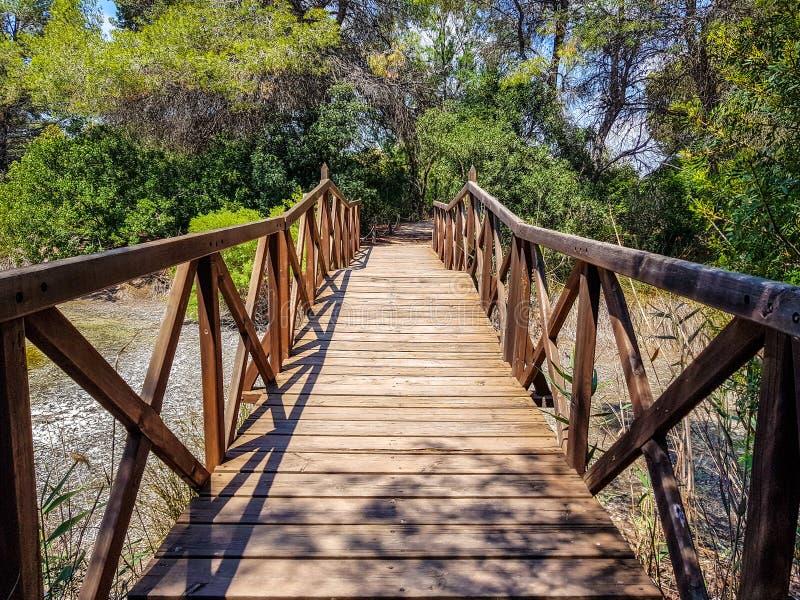 Die Brücke, die mit errichtet wird, meldet die Interpretationsmitte des Albufera Des Valencia und die Lagune an, die nahe bei bes lizenzfreies stockfoto