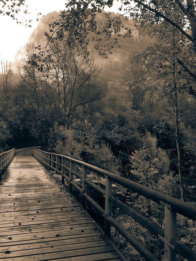 Die Brücke von Daones Tal stockbild