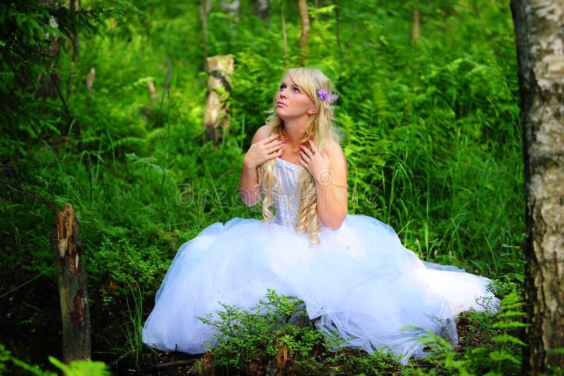 Die Braut im Holz stockfotografie