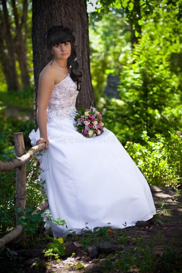 Die Braut mit einem Blumenstrauß auf einem Baum lizenzfreie stockfotos