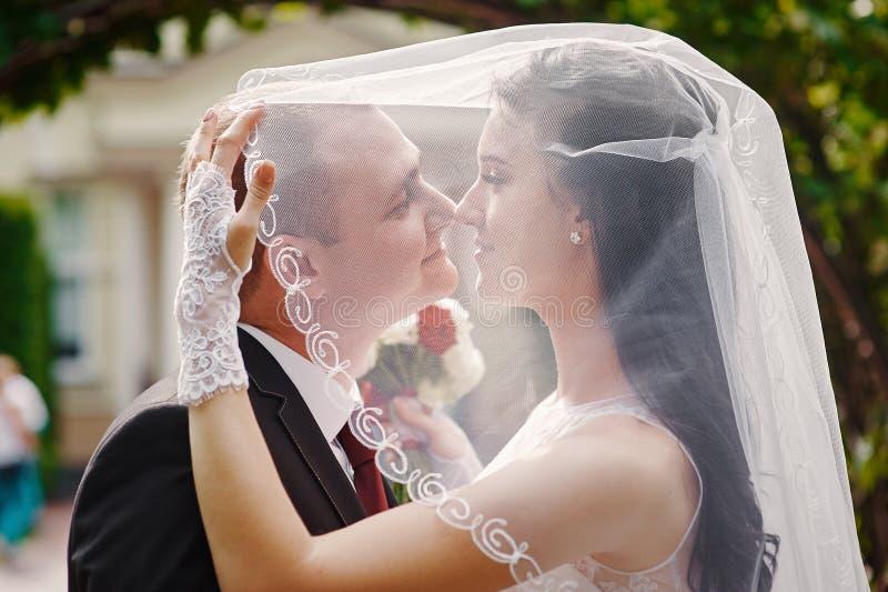Die Braut und Bräutigam, die in Sommer gehen, parken draußen mit Architektur lizenzfreie stockbilder