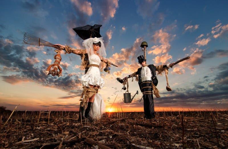 Die Braut- und Bräutigamvogelscheuchen stockbilder