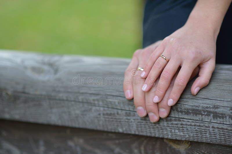Die Braut und Br?utigam ` s H?nde mit Ringen lizenzfreies stockbild