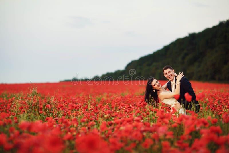 Die Braut und der Bräutigam auf einem Mohnblumengebiet stockfoto