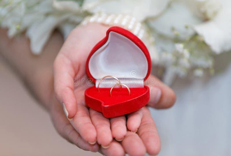 Die Braut und der Bräutigam, die einen offenen Kasten mit Ringen halten lizenzfreies stockbild