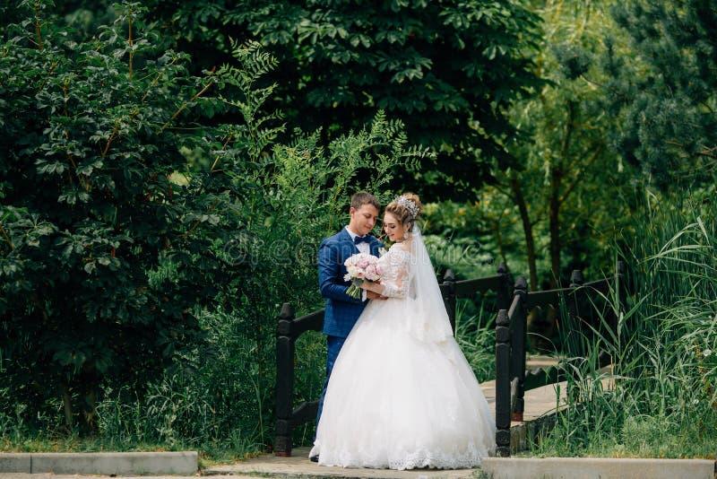 Die Braut und der Bräutigam heirateten gerade und Weg im Park und warfen nahe der Brücke über dem Fluss auf Die Jungvermählten lizenzfreie stockfotografie