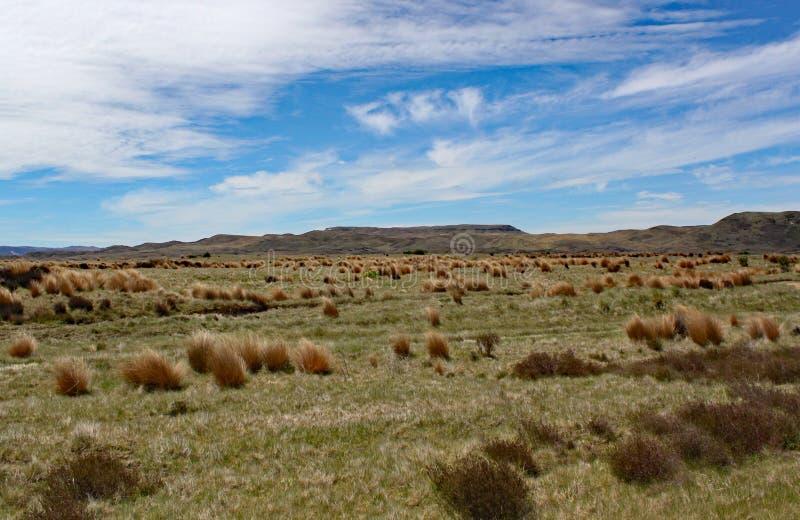 Die breiten offenen Räume der waikato Region von Neuseeland stockfotografie