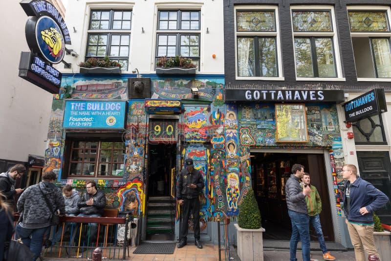 Die Bulldoggenkaffeestube im Rotlichtviertel von Amsterdam, Holland, die Niederlande stockbild