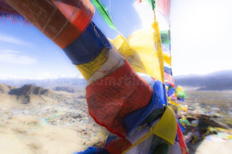 Die bunten tibetanischen Gebetsflaggen bei Leh, Ladakh, Indien lizenzfreies stockfoto