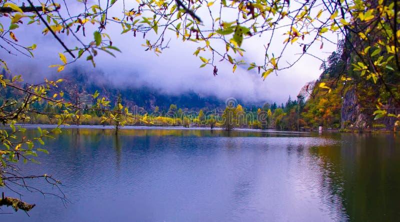 Die colorized Waldung und die Seen lizenzfreies stockfoto