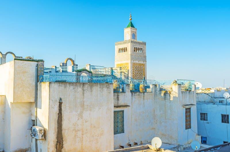 Die Dächer von altem Tunis stockbilder