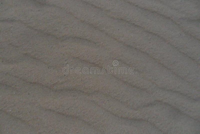 Die Dünen von Corralejo in Fuerteventura-Insel in den Kanarischen Inseln lizenzfreie stockfotos