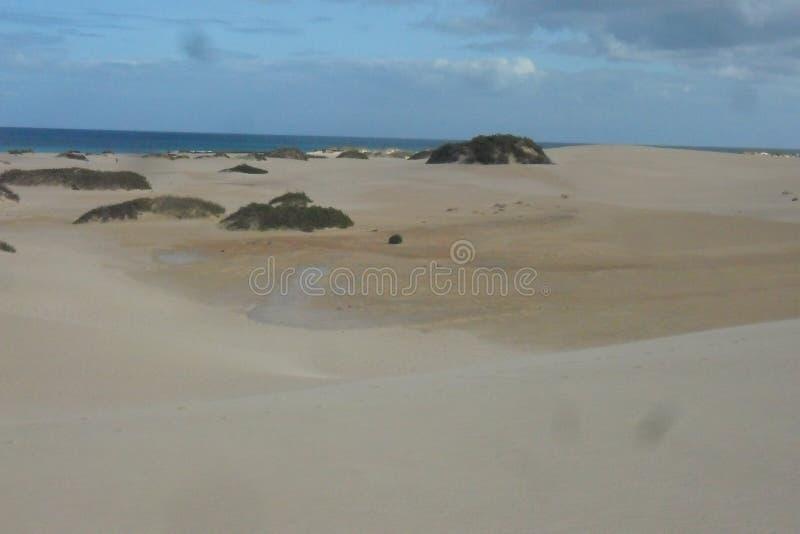 Die Dünen von Corralejo in Fuerteventura-Insel in den Kanarischen Inseln lizenzfreies stockbild