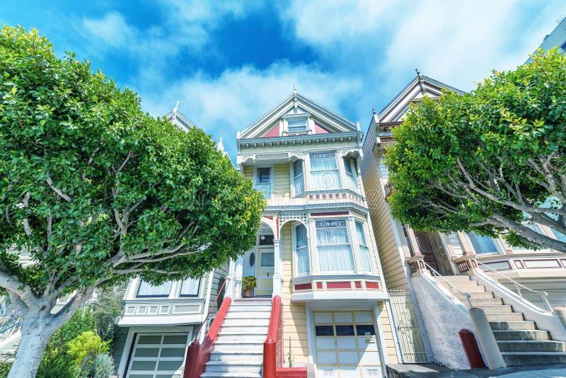 Die Distelfalter in San Francisco umgaben durch Bäume lizenzfreie stockbilder