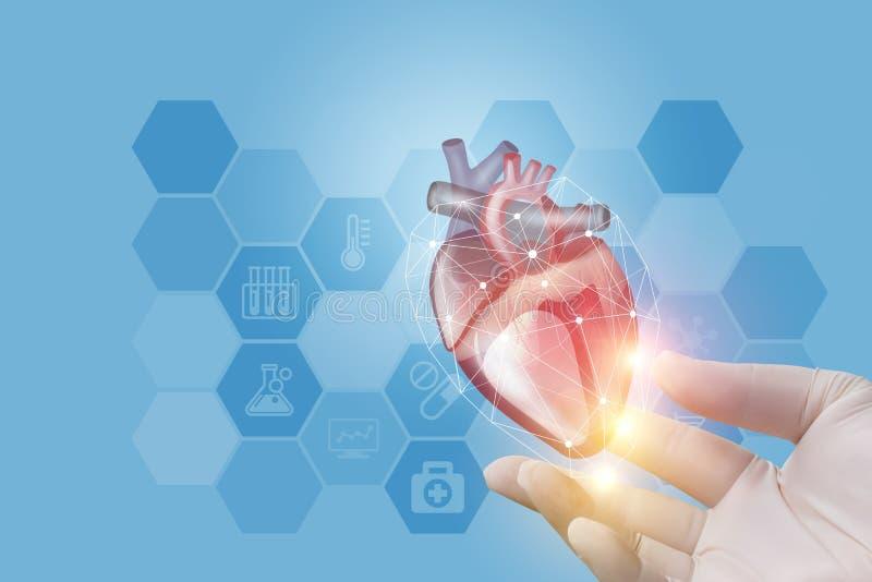 Die Doktorvertretung ist Herz in der Hand stockbilder
