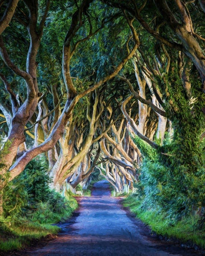 Die dunklen Hecken, Irland in der bunten Zusammenfassung lizenzfreies stockfoto