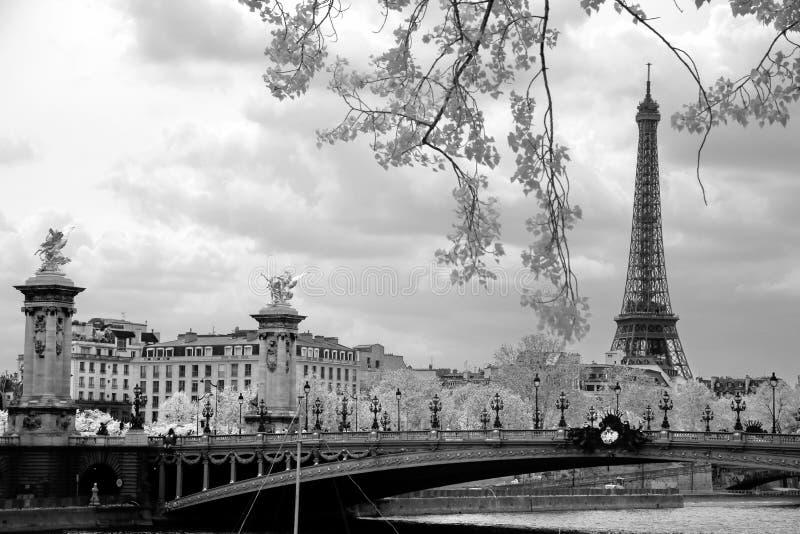 Die Eiffelturm- und Alexandre-III Brücke in Paris, Frankreich lizenzfreies stockfoto