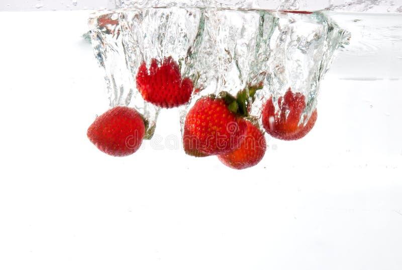 Die Erdbeeren, die in Wasser fallen gelassen werden, spritzen lizenzfreies stockbild