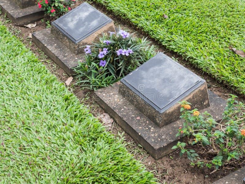 Die ernste Reihe des verbündeten Militärfriedhofs lizenzfreies stockbild