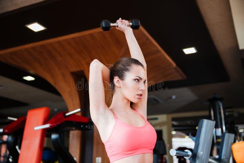 Die ernste Sportlerin, die Übungen für Arme tut, mischt mit dumbbels mit stockbilder