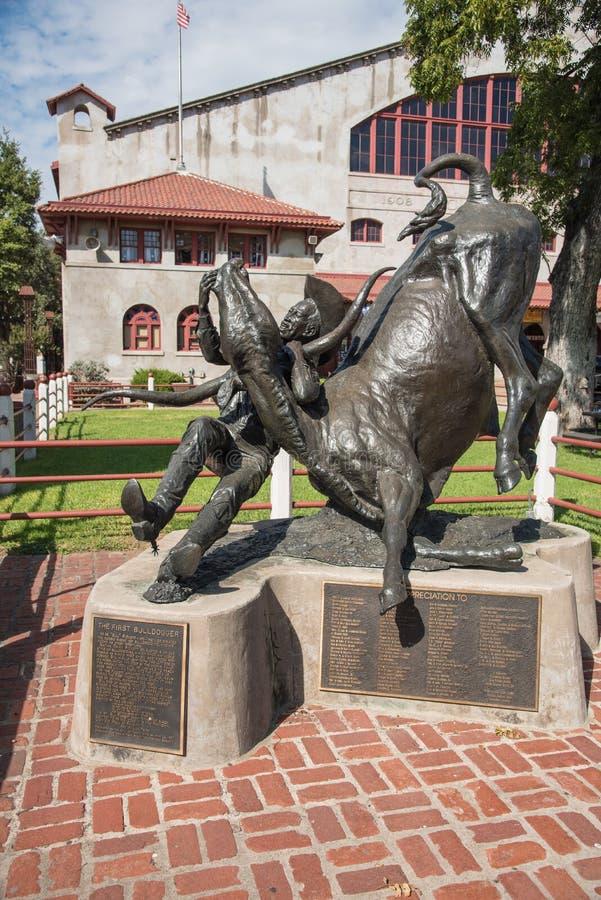 Die erste Bulldogger-Cowboystatue in Fort Worth, Texas stockfoto