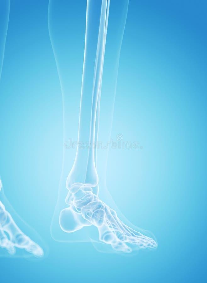 Die Füße lizenzfreie abbildung