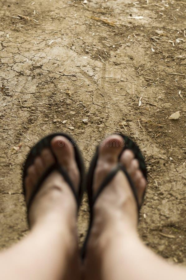 Die Füße und die Beine der Frau in den Sandalen verwischt stockbilder