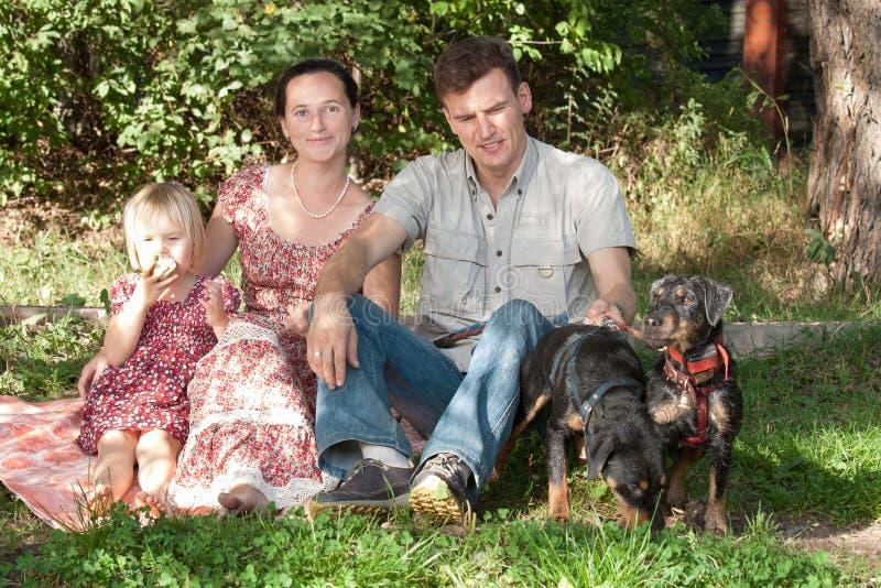Die Familie sitzt auf einem Gras im Park, in der Nähe dort sind zwei Hunde lizenzfreies stockbild