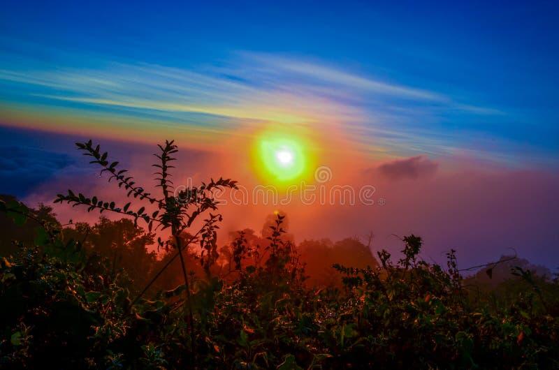 Die Farbe des Nebels stockbild