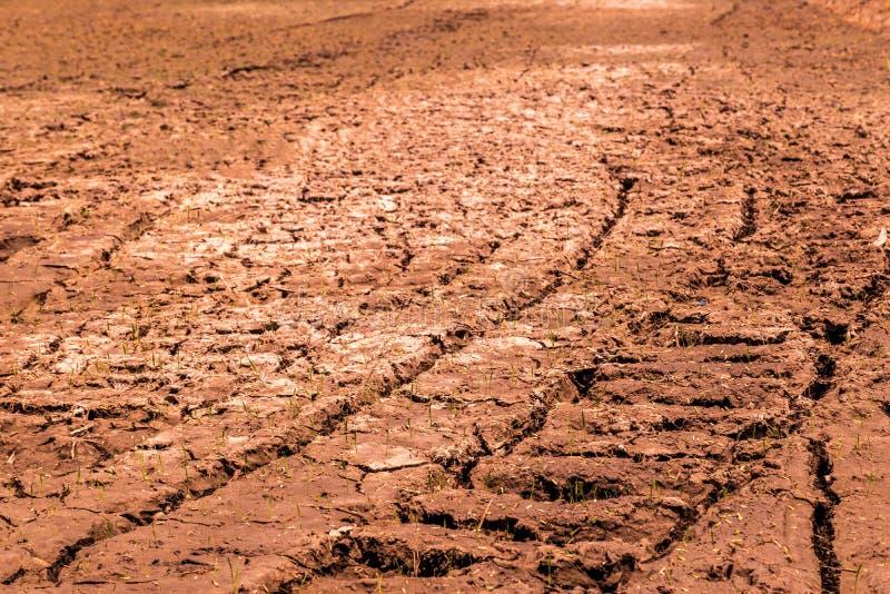 Die Felder sind trocken, das Land ist defekt stockfotos