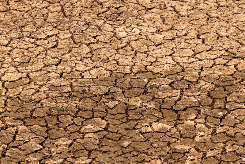 Die Felder sind trocken, das Land ist defekt stockfoto