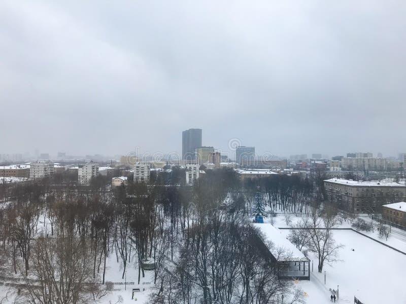 Die Fensteransicht über den Park im Winter lizenzfreies stockbild