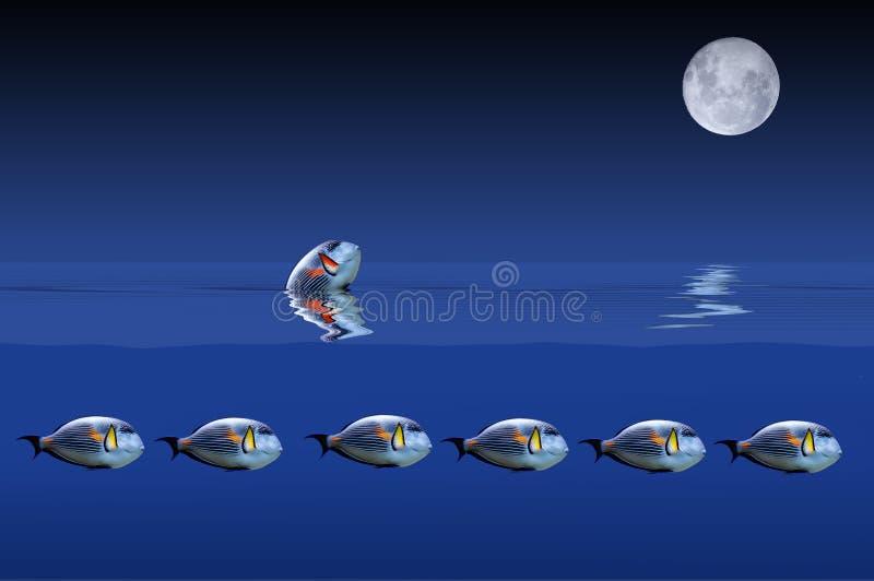 Die Fische und der Mond stock abbildung