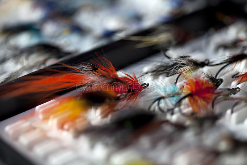 Die Fischerei fliegt in einen Kasten stockfotografie