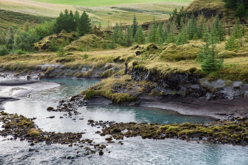 Die Flussbank mit grünen Steigungen und Bäumen auf ihr lizenzfreie stockfotografie