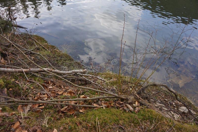Die Flussbank mit ruhigem Wasser lizenzfreie stockbilder