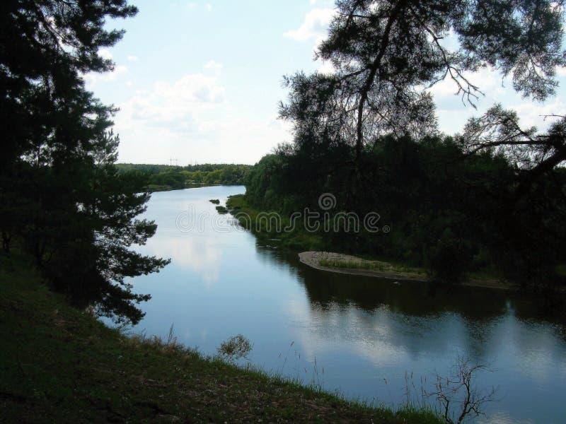 Die Flussbank vor dem hintergrund des Holzes lizenzfreie stockfotografie