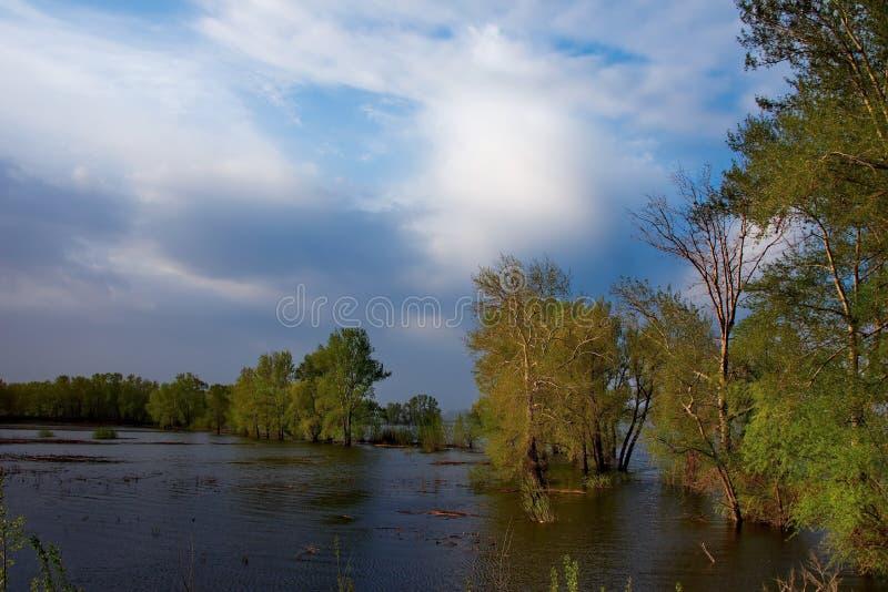 Download Die Flut auf dem Irtysch stockfoto. Bild von asien, blau - 106802870