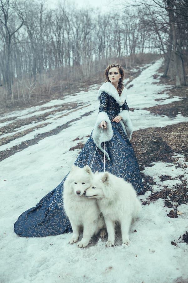 Die Frau auf Winterweg mit einem Hund stockbild