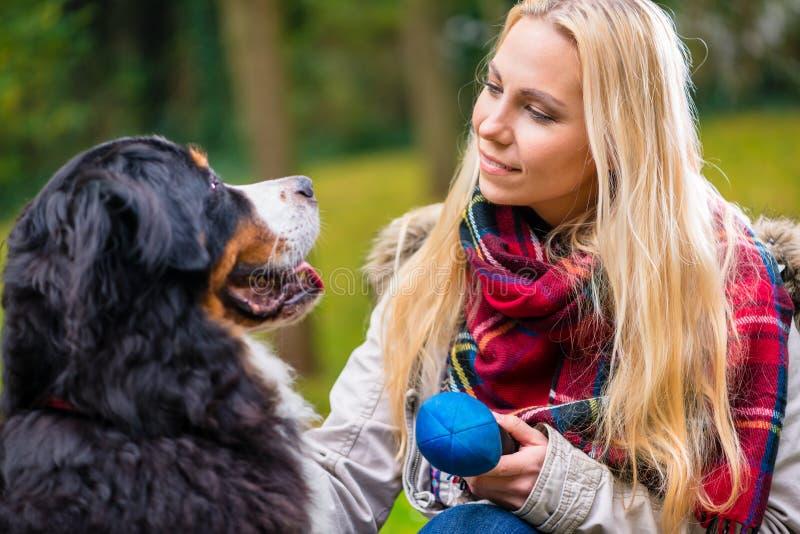 Die Frau, die mit ihrem Hund spielen und das Spielzeug im Herbst parken lizenzfreie stockfotos