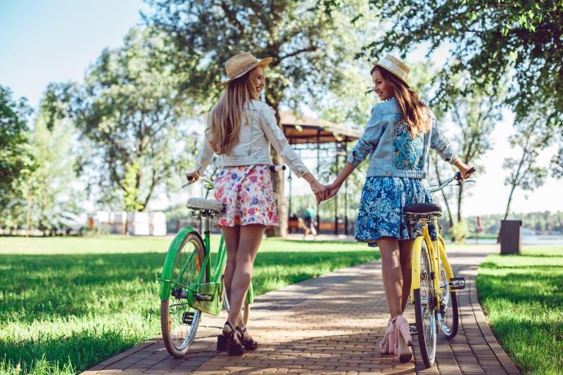 Die Frauen, die in den Sommer gehen, parken das Händchenhalten, das im Sonnenuntergang mit ihren Fahrrädern schaut stockbilder