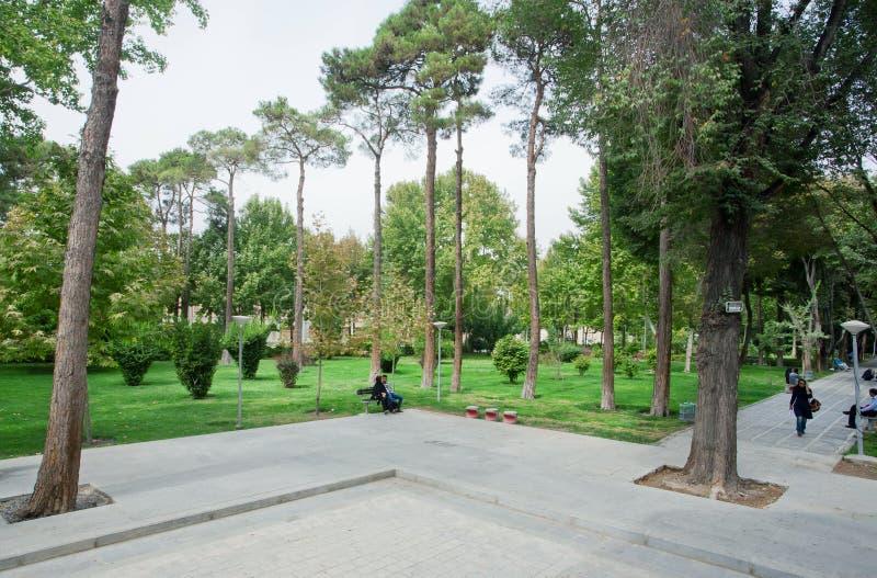 Die Frauen und Männer, die auf dem banch einer Stadt sitzen, parken mit grünen Bäumen stockbilder