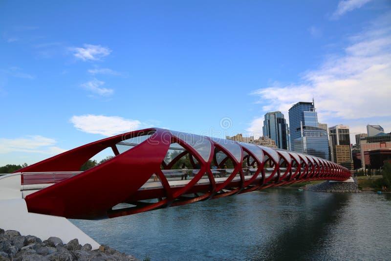 Die Friedensbrücke in Calgary, Alberta lizenzfreie stockfotos